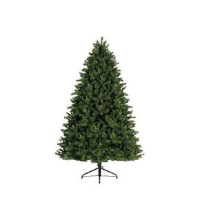 Green Freiburg Pine Tree 210cm