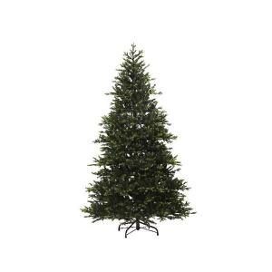 Queensland Green Fir Tree 210cm