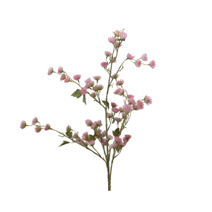 Branch With Blush Pink Flowers