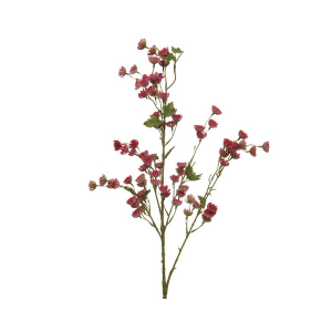 Branch With Red Flowers