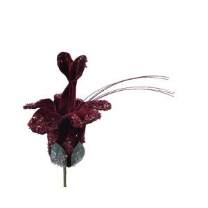 Velvet Flower Dark Purple