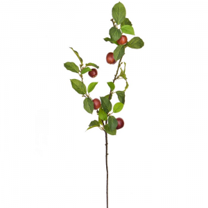 Foliage Apple With Red Fruit