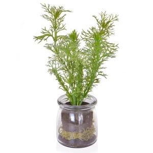 Dill In Glass Vase Jar