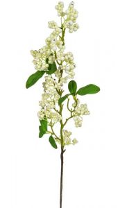 Foliage Snowberry Real Touch Cream 61