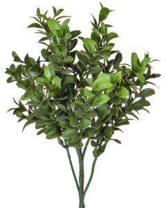 Foliage Buxus Green 47