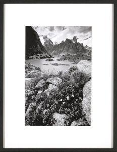 New Mountains E Print