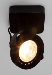 Dice-1 DTW Spot Light