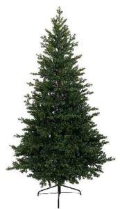 Allison pine 180cm