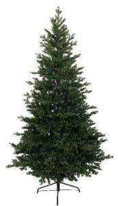 Allison pine 210cm