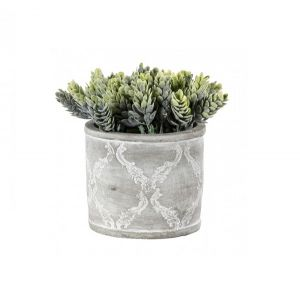 Hops Green with Patterned Pot