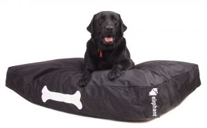 Elephant Dog Beds – Large Black